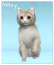 Chapman, Mitzy