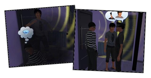 Emmett burglar