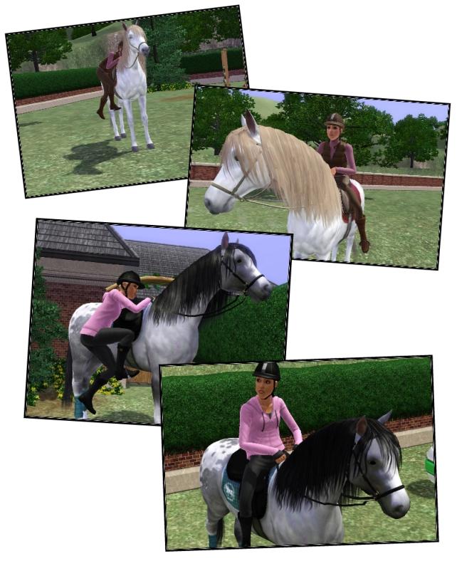 hk on horse