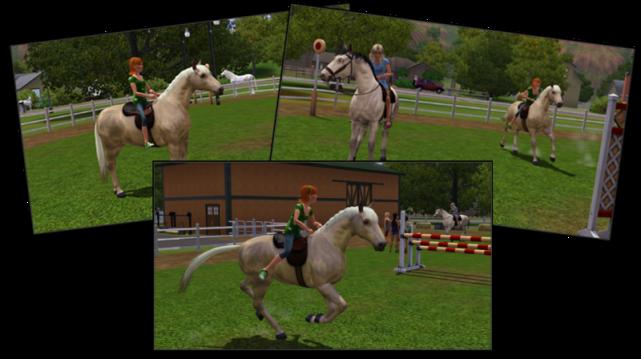 Kyra and Holly horses