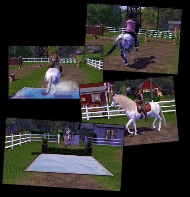 teen horses