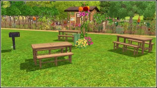Picnic tables! The Field is an inviting place.
